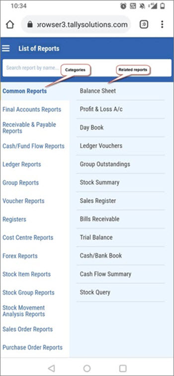 Categories and Related Reports in Tally Reports in Browsers (Mobile-Responsive Design)